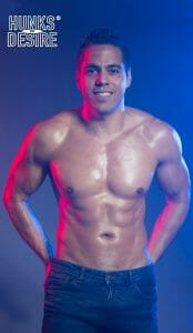 the hunks of desire show